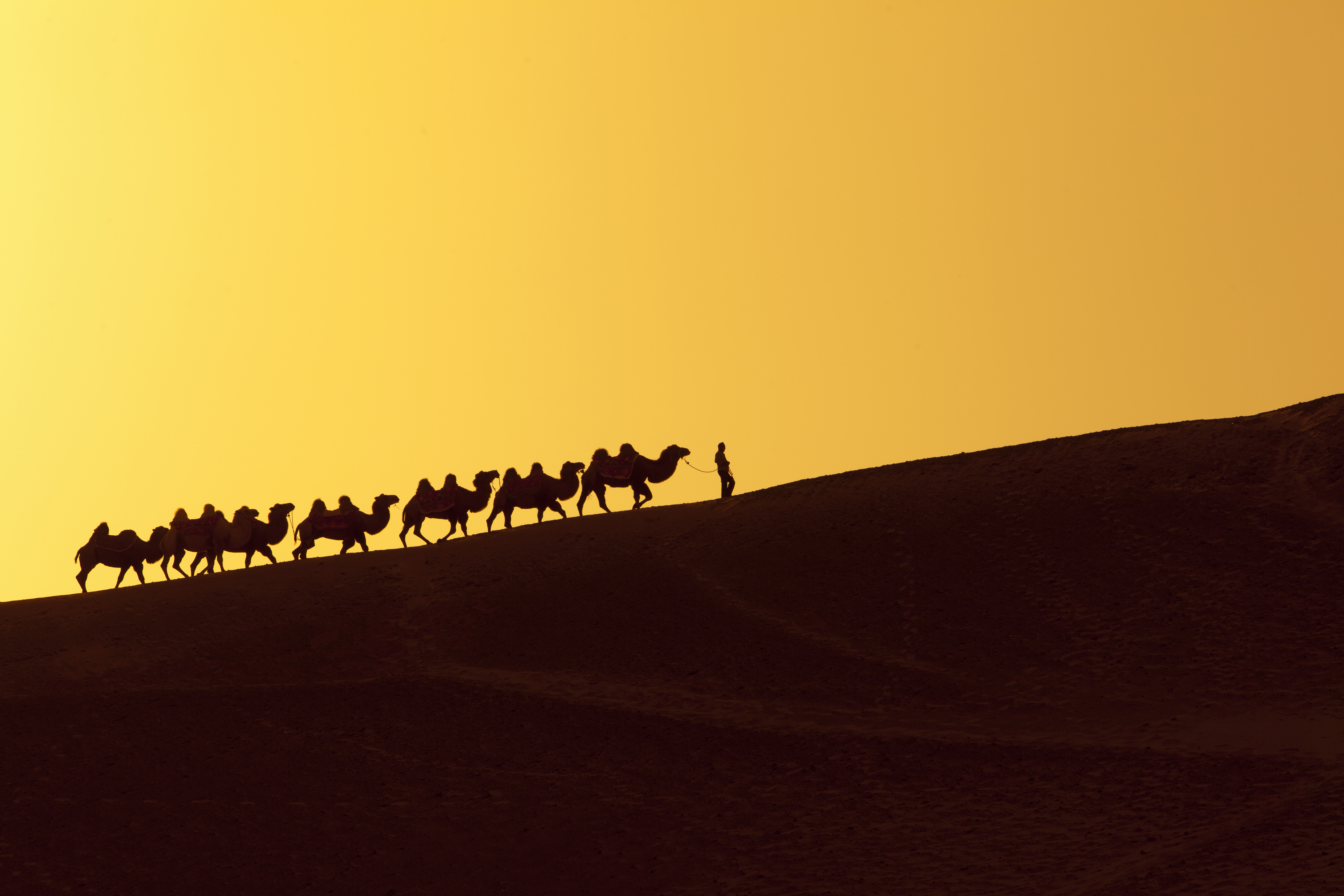 how to get on silk road