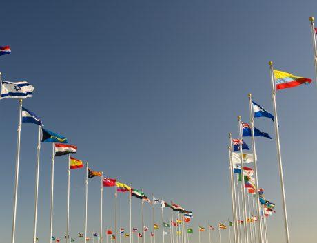 Flags World World Trade Organisation