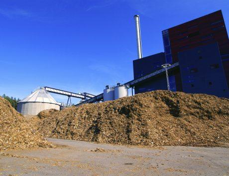 Biomass Biopower Plant Wood