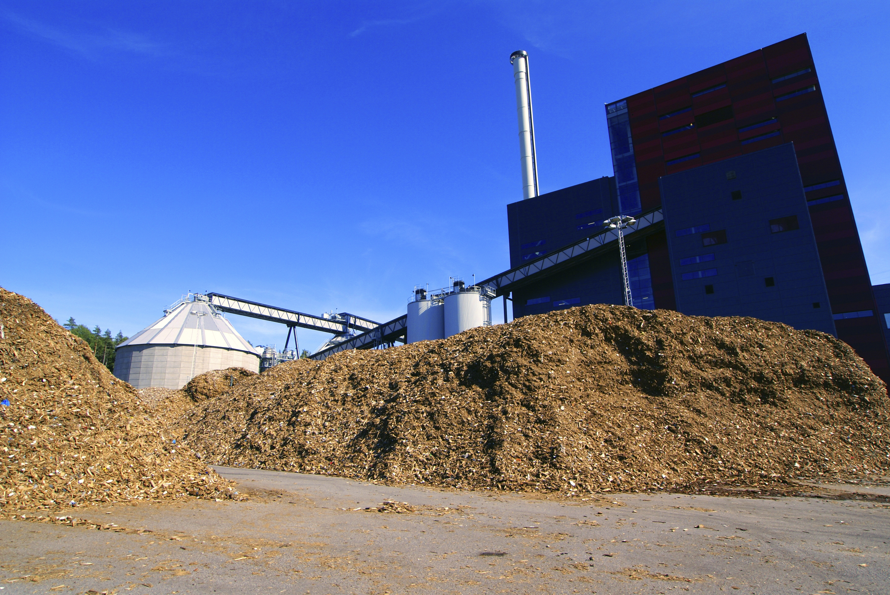 Biopower in the philippines gets financial boost global