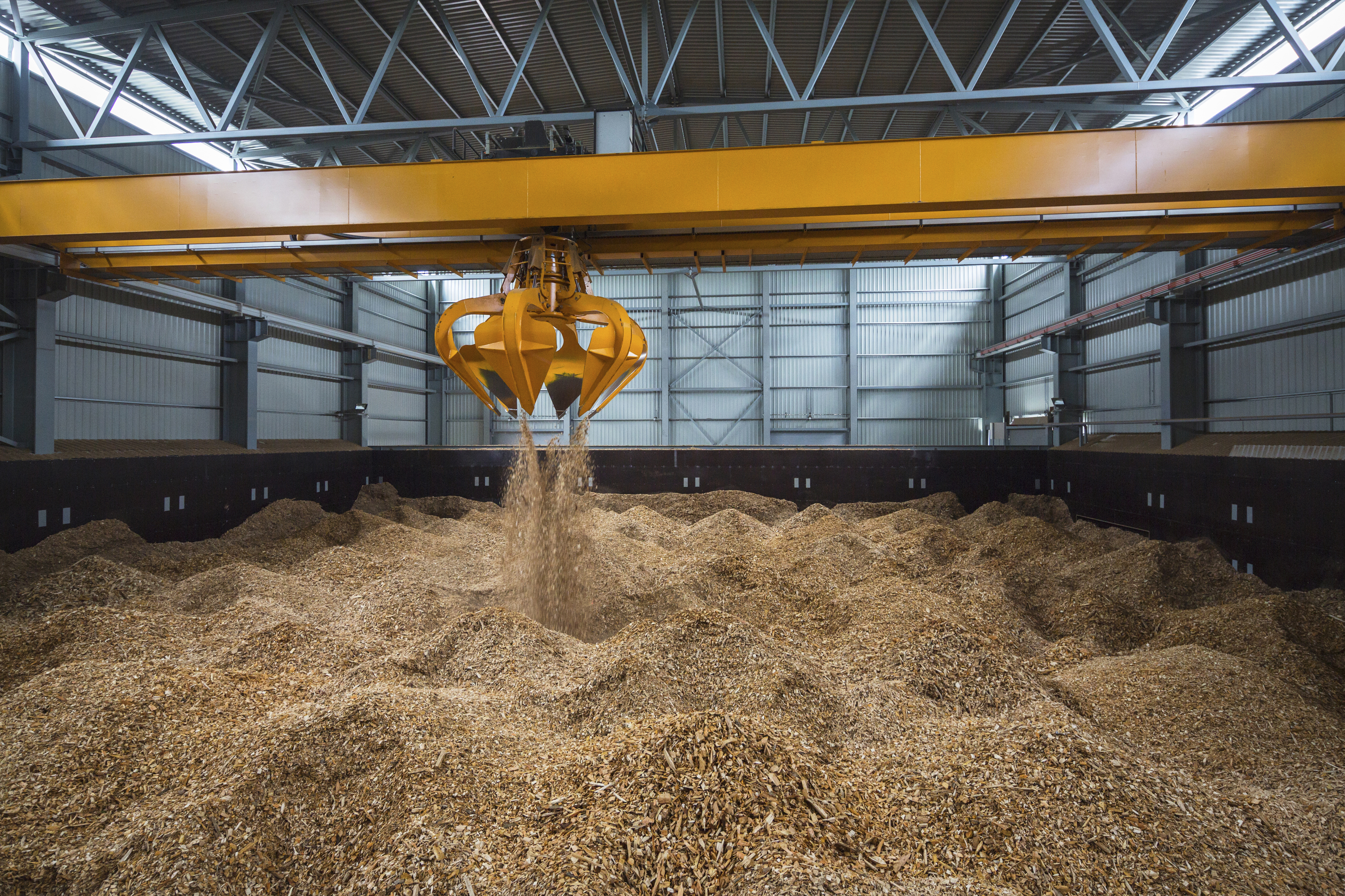 Biomass Wood Chips ~ Biomass wood chips storage global trade review gtr