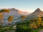 Cape Town South Africa trees nature mountains