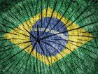Brazil-Crisis-Flag-Wood_News