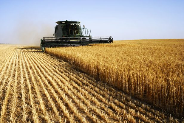 Combine harvester crop agriculture