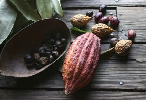Cocoa beans food