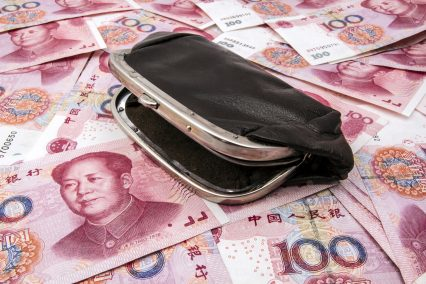RMB money Chinese wallet
