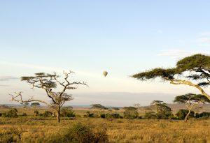 Tanzania savannah hot air balloon