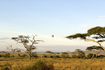 Tanzania savannah hot air balloon