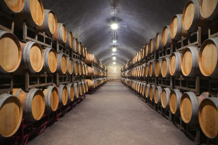 Underground wine cellar barrels