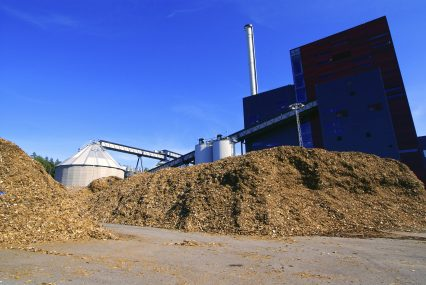 Biomass Biopower Plant Wood