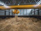Biomass Wood Chips Storage