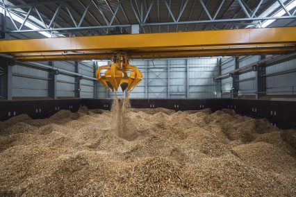 Biomass Wood Chips Storage