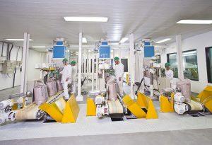 Biosev sugar processing