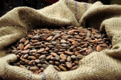 Cocoa Beans Bag