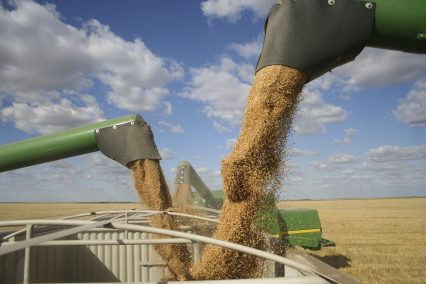 Grain Augers Harvest