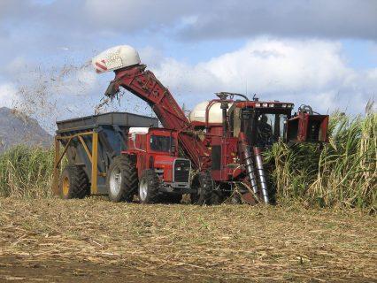 Harvester Sugar Cane Agribusiness