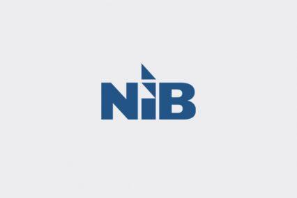NIB_logo_bg