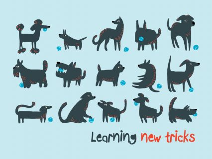 Learning-new-tricks