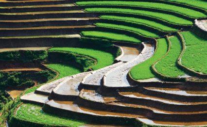 Vietnam-feature