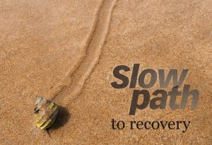 Slow-path-to-recovery_3