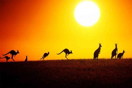 Australian solar financing